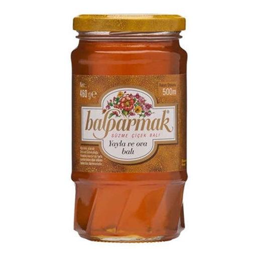 BALPARMAK Blossom Honey 350g resmi