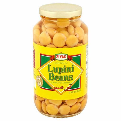 ZIYAD Lupini Beans 454g resmi