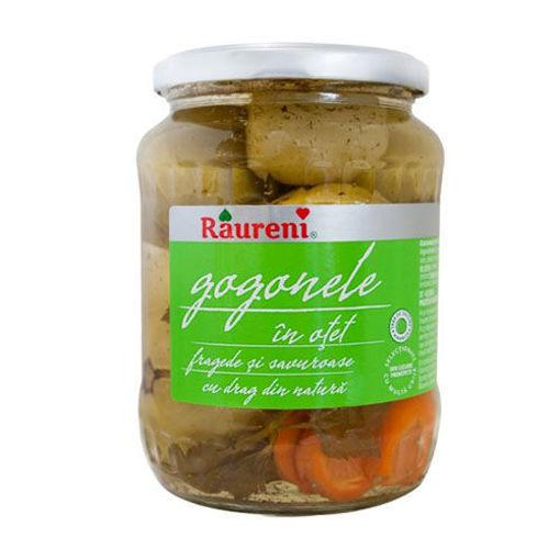 RAURENI Gogonele (Green Tomatoes in Vinegar) 700g resmi
